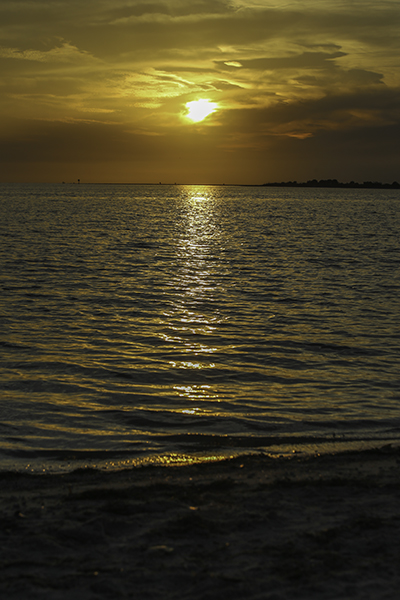 Sunset at Dunedin Causeway